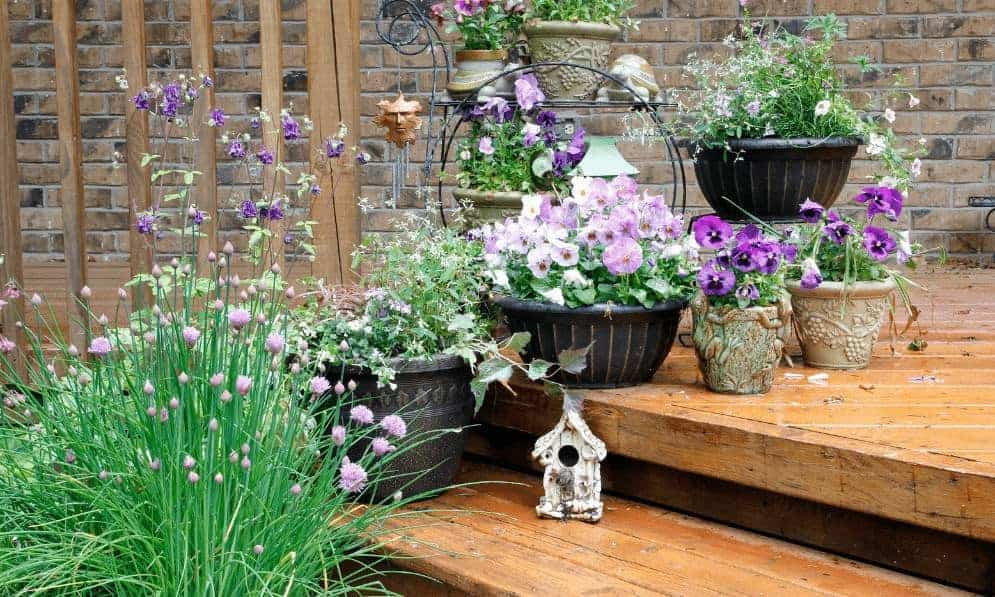 Improve the curb appeal of your home with a container garden